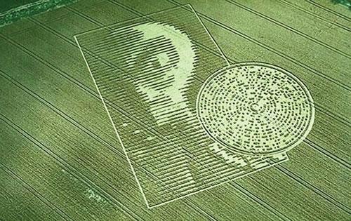 Alien Make The Crop Circles