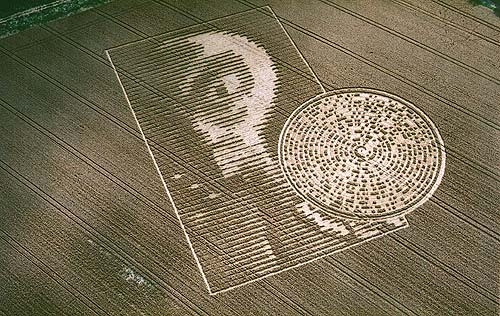Alien face crop circle