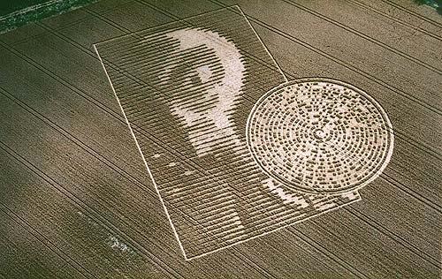 Alien face crop circle