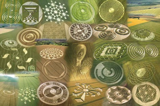 Top 10 Mysterious Alien Crop Circles In The World