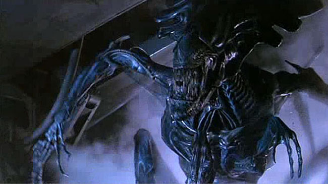 5 Stages Of Alien Xenomorph Life Cycle