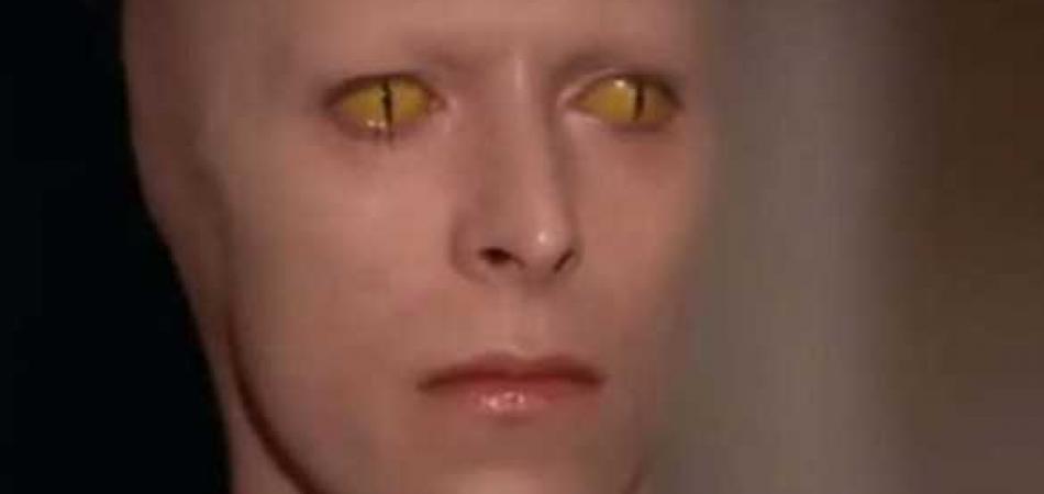 Top 10 Alien Human Hybrid Characteristics | Proof Of Aliens Life