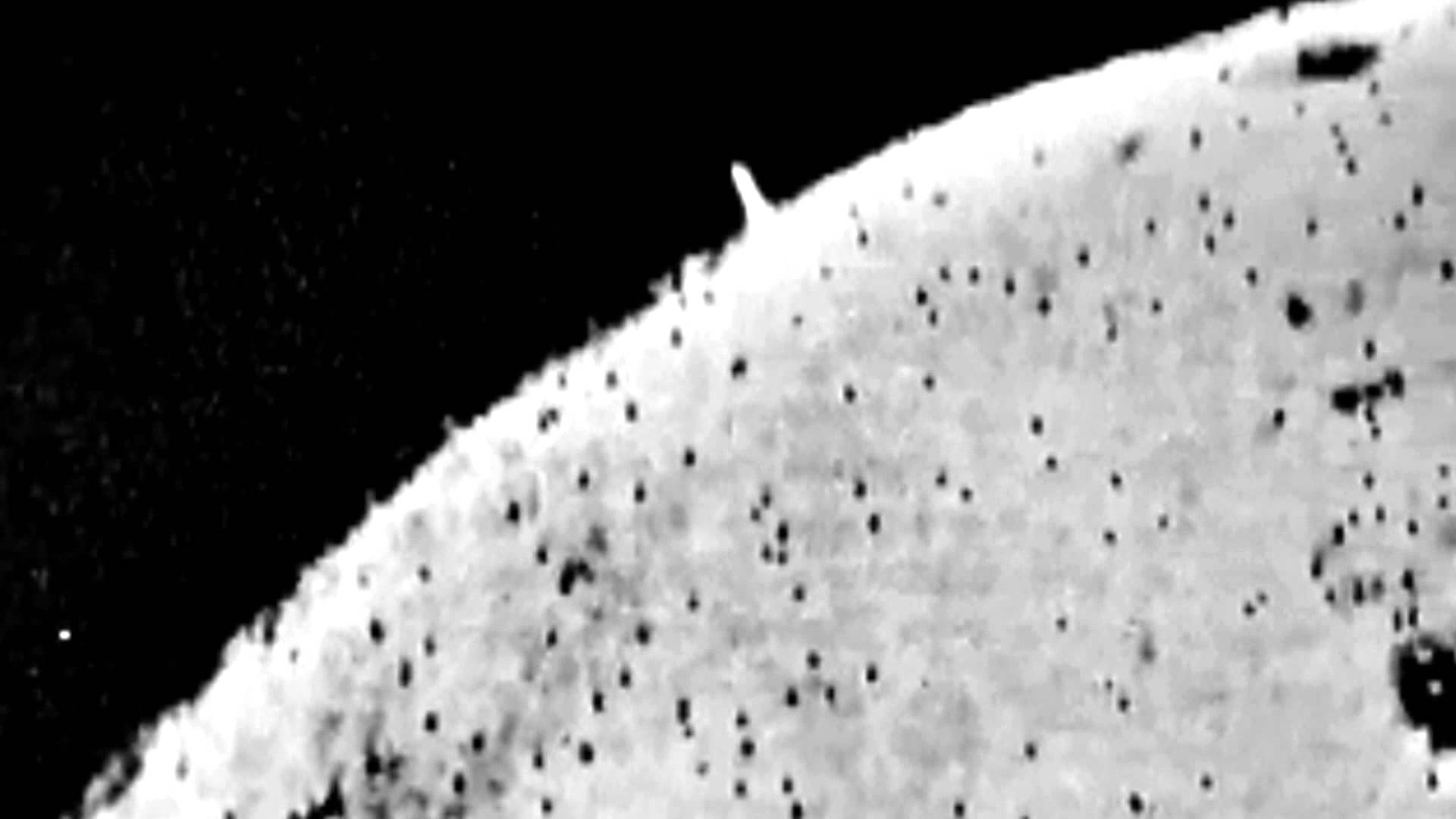 Apollo 11 astronauts alien tower