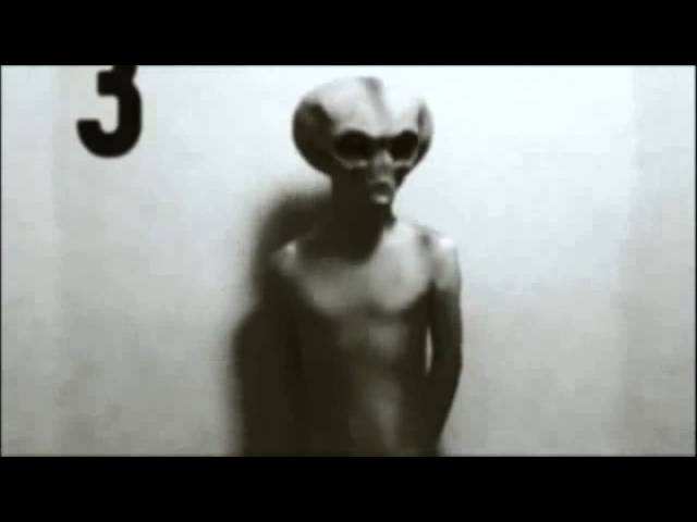 Proof Of Aliens Pictures  11