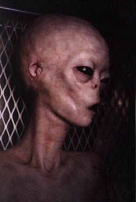 Proof Of Aliens Pictures 13