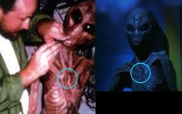 Prove The Area 51 Alien Interview Was Hoax