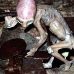 Top 20 Proof Of Aliens Pictures Ever Taken