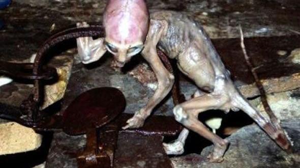 Top 20 Proof Of Aliens Pictures Ever Taken