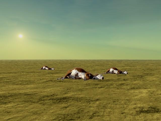 cattle mutilation 5