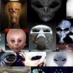 Top 10 Different Types Of Alien Species On Earth